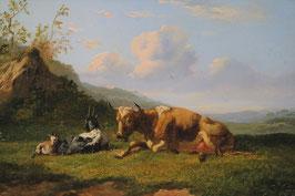 Haas, Johannes Hubertus Leonardus de (1832-1908)