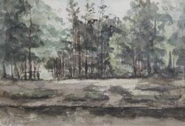 Bilders, Albertus Gerardus (1838-1965)