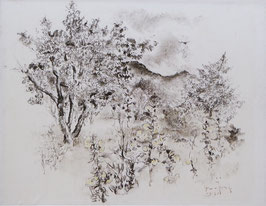 Jong, Germ de (1886-1967)