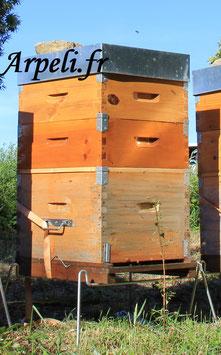 Réservation ruche neuve Dadant peuplée + 2 hausses complètes pour Avril 2022.