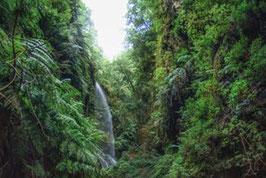 Wasserfall   /  946