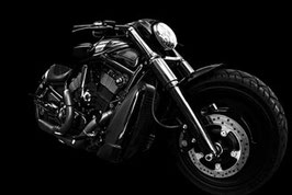 Harley Davidson / 344