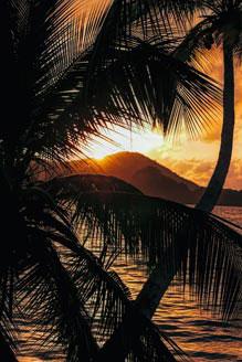 Tobago   /   109