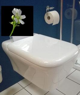 Keramag myDay Tiefspül-WC plus WC-Sitz