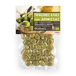 Grüne Oliven AMFISSIS - BIO