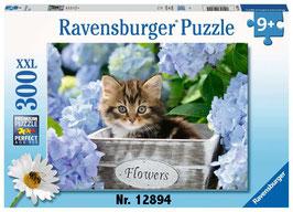 RAVENSBURGER Puzzle 9+