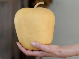"Calabash Apple ou ""Calabasse"""