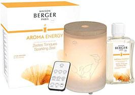 Lampe Berger Diffuseur Electrique