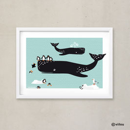Poster Illustration: Wale & Pinguine