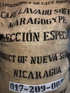 """Nicaragua - Arabica SHG EP - Maragogype """"Elefantenbohne"""""""