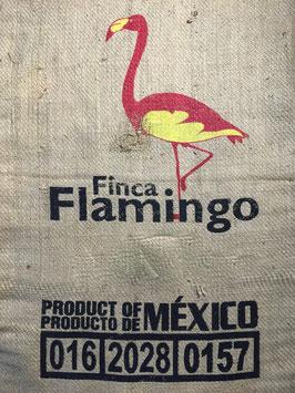 Mexico - Finca el Flamingo - SHG EP Organic