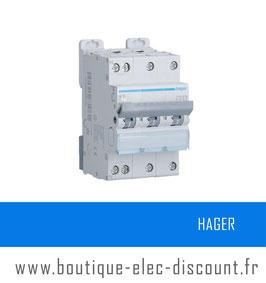 Disjoncteur Hager Tétrapolaire 20A Réf NFT820