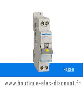 Disjoncteur Hager 10A à vis Réf MFN710