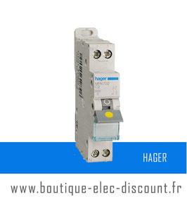 Disjoncteur Hager 2A à vis Réf MFN702
