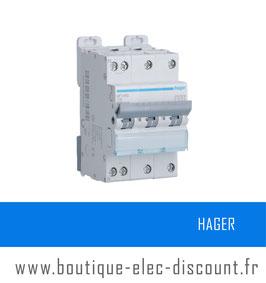 Disjoncteur Hager Tétrapolaire 10A Réf NFT810