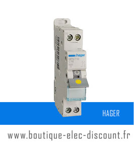 Disjoncteur Hager 16A à vis Réf MFN716
