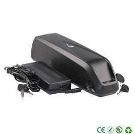 Batería 48V, caja Hailong distintas capacidades