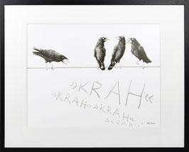 Bild – Rabenvögel