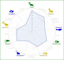 Stern-Diagramm mit Auslegung