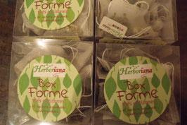 Herboriana box FORME