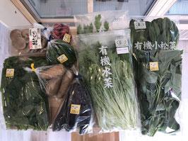 自社便エリア 旬野菜セット(金か土曜の配達)
