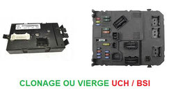 _Clonage ou Vierge UCH et BSI
