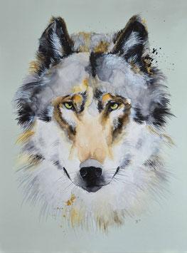 "Wolf ""Igor"""