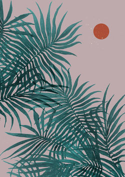 Palms rose