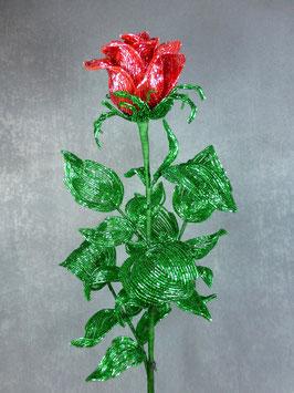 "Бокаловидная роза ""Адриана"""