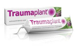 Traumaplant ® Schmerzsalbe (100)