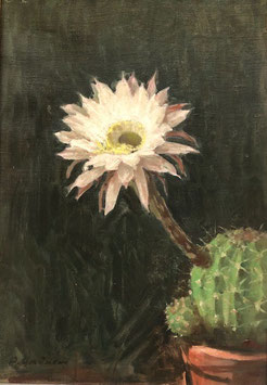 Gmünder Paul, Thun, «Blühender Kaktus», (bereits verkauft)