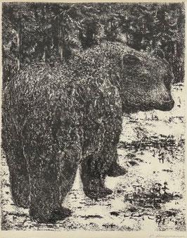 Bergmann Peter, «Bär»