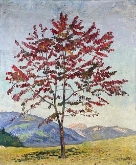 Bandi Hans, «Baum mit Herbstlaub»