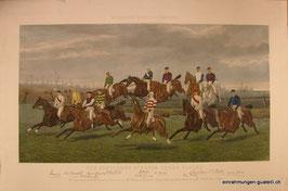 Pferderennen Grafik