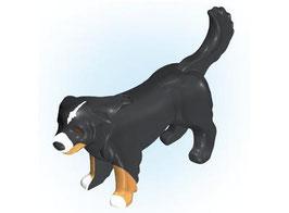 PLAY.ANI18.0062.9102# Animal Perro Montaña Bernese