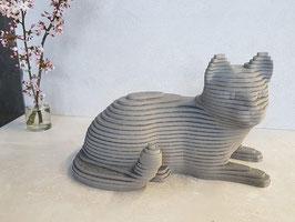 3D Kat Zwart