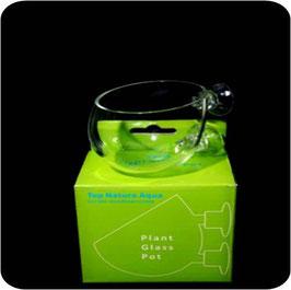 Pflanzenbehälter / Pflanztopf auf Glas