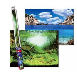 Aquarien-Rückwandposter