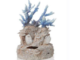 Samuel Baker Riffkorallen-Skulptur