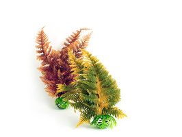 "Pflanzenset ""Herbst"""