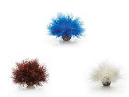 Seelilie Dekoration blau
