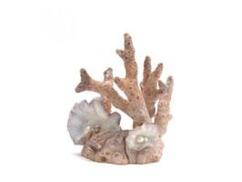 Samuel Baker Korallen-Skulptur small