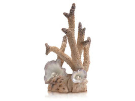Samuel Baker Korallen-Skulptur Large