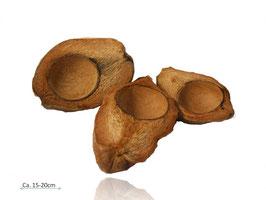 Kokosnuss längs halbiert