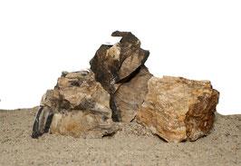 Versteinertes Holz bunt Layout