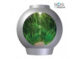 spyOrb Edition Komplett Aquarium 30L silber oder weiss