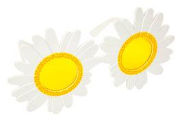 Lunettes marguerites Sunnylife