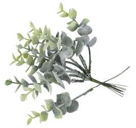 10 Branches d'Eucalyptus sur Tige 19cms