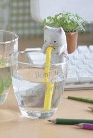¨Plante à faire pousser plant menthe Chuppon chat