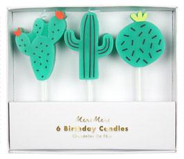 6 bougies cactus meri meri